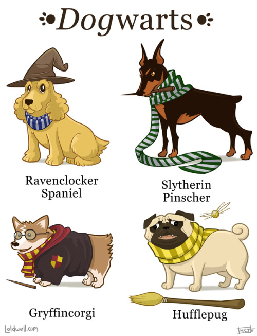 blogwell:  The Houses of Dogwarts I can't wait to see who our Defense Against the Bark Arts teacher is! Many thanks to Owen for punning out with me on these names.