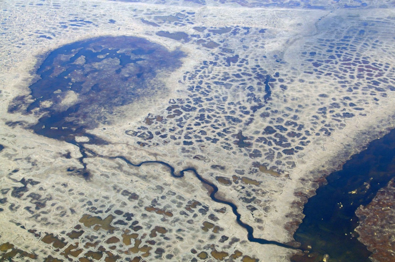 Connected Thaw Lakes and patterned ground, North Slope, AK. Credit: Irina Overeem. (via CSDMS)