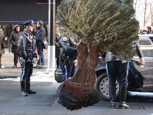 @BBCNews Tree arrested after man run over bbc.in/ndM7ZG