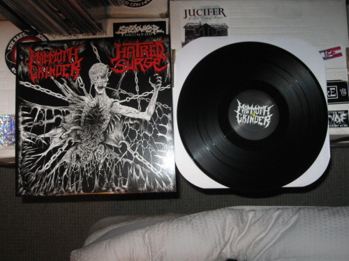 Mammoth Grinder/Hatred Surge - split (Cyclopean Records 2011)