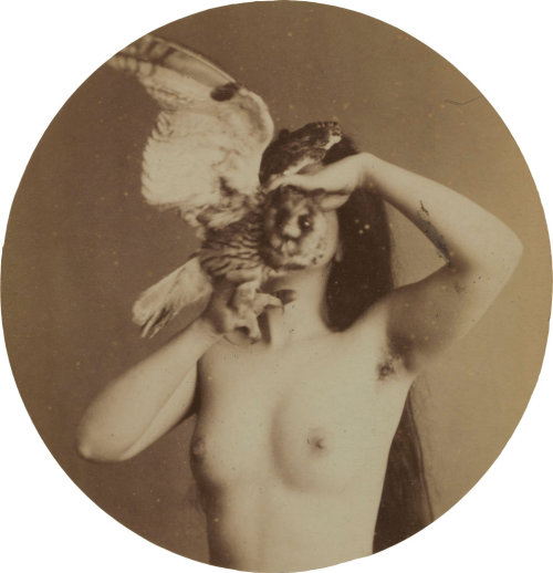 wolfteeeeth:  Anon circa 1870, from the Pierre-Marc Richard collection
