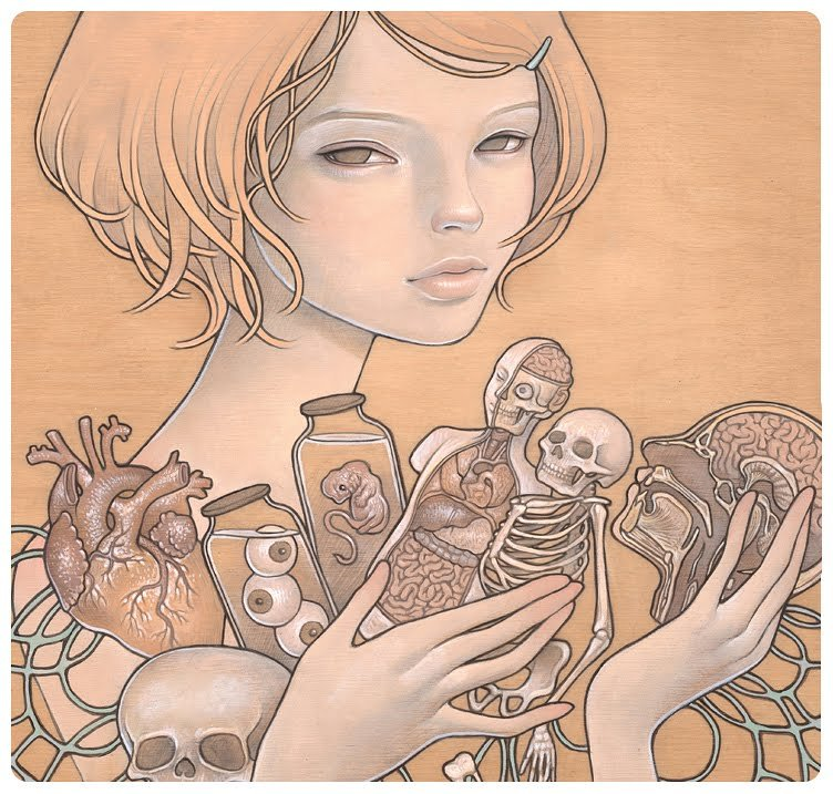 Anatomy Lessons by Audrey Kawasaki