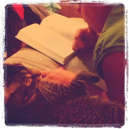 Ryckie and Sid reading a book.  (Taken with instagram)