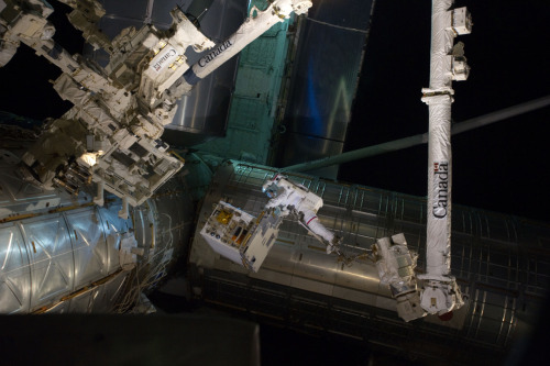 Patriotic Space Walk (photo via NASA; robotics via CSA)