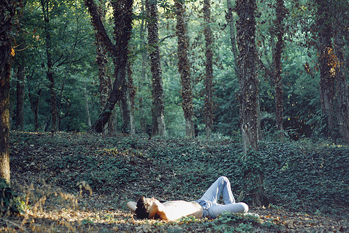 I want to spend an afternoon on he forest floor like this. Listening to Sigur Ros on my headphones and daydreaming.