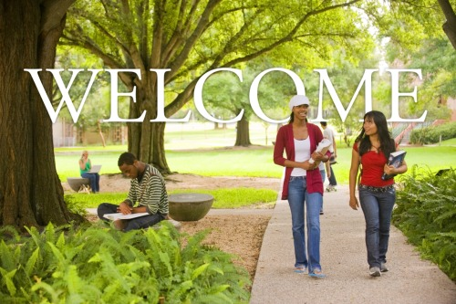 Welcome to the official Tumblr for the University of South Florida! Here you will find a compilation of works showcasing life at USF.   Do you have images, videos or other content that relates to USF? Show us your work by clicking the submit button! You could see your work on the USF Tumblr.