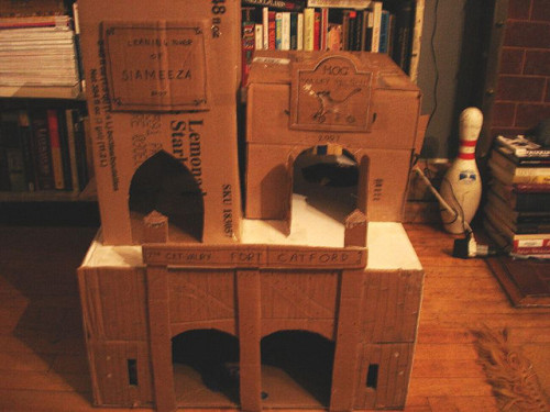Cat Fort Manor, a medieval style cat hotel is currently at catpacity. In a recent article by Cat Magazine, Cat Fort Manor was given five-paws and named Meow of the Month from my ex-girlfriend.