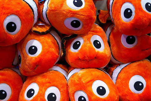 HEY! I found nemo…. =]