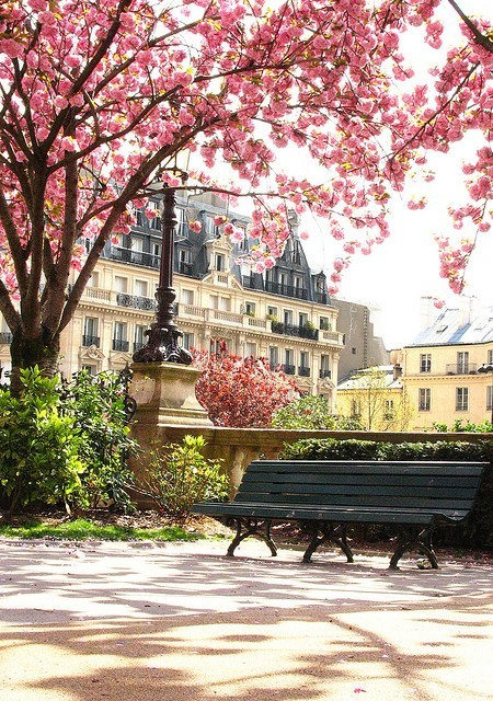 cookingloveandlife:  Springtime in Paris