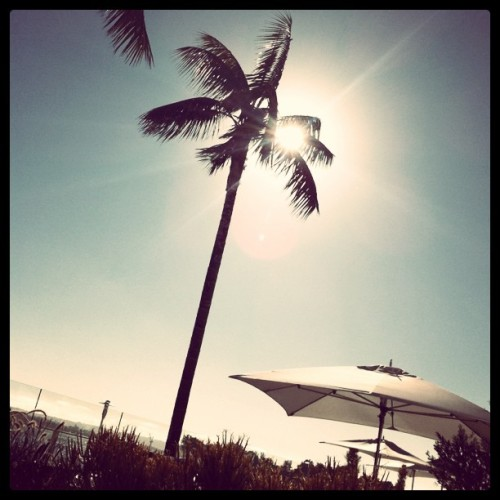 frstdflks:  Taken with Instagram at Pool at Hilton San Diego Bayfront Hotel