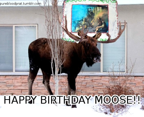 nerdylittledude:  HAPPY BIRTHDAY TO EVERYONE'S FAVORITE MOOSE  HAPPY BIRTHDAY JARED DARLING yes this is from last year okay it's relevant again