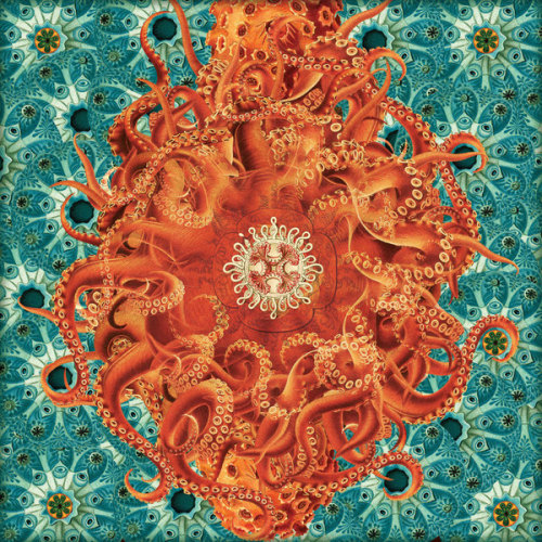 Luis Toledo. Tentacle collage.