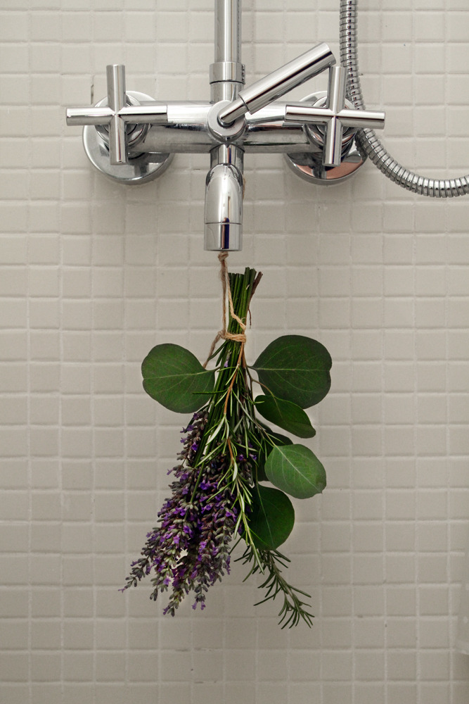 Fresh lavender in the bathroom. The home of Maryam Riazi, Beachwood Canyon