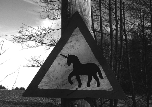 UNICORN CROSSING PEOPLE