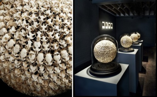 Ridiculous art made using mouse skulls (like this one), wasp nests and owl poop: that's just a day in the life for sculptor Alastair Mackie. He's all about the unexpected, creepy taxidermy. Submitted by Don't Panic Online, thank you!