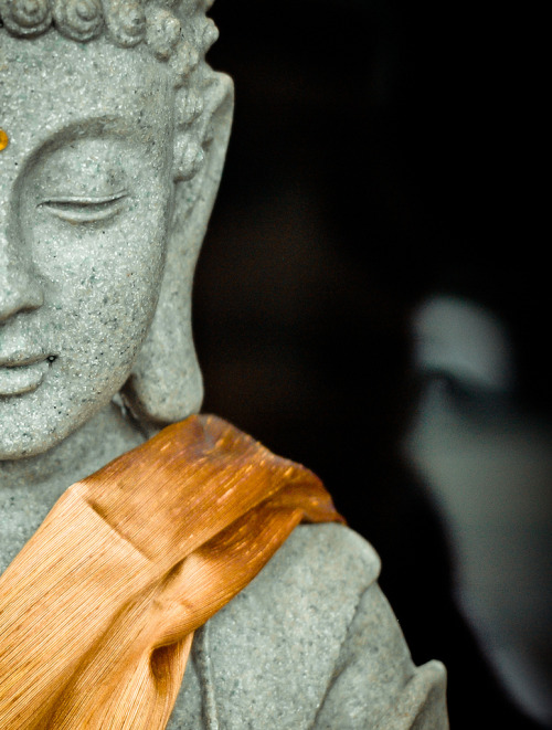 """the four noble truths 1. Life means suffering. To live means to suffer, because the human nature is not perfect and neither is the world we live in. During our lifetime, we inevitably have to endure physical suffering such as pain, sickness, injury, tiredness, old age, and eventually death; and we have to endure psychological suffering like sadness, fear, frustration, disappointment, and depression. Although there are different degrees of suffering and there are also positive experiences in life that we perceive as the opposite of suffering, such as ease, comfort and happiness, life in its totality is imperfect and incomplete, because our world is subject to impermanence. This means we are never able to keep permanently what we strive for, and just as happy moments pass by, we ourselves and our loved ones will pass away one day, too. 2. The origin of suffering is attachment. The origin of suffering is attachment to transient things and the ignorance thereof. Transient things do not only include the physical objects that surround us, but also ideas, and - in a greater sense- all objects of our perception. Ignorance is the lack of understanding of how our mind is attached to impermanent things. The reasons for suffering are desire, passion, ardour, pursuit of wealth and prestige, striving for fame and popularity, or in short:cravingand clinging. Because the objects of our attachment are transient, their loss is inevitable, thus suffering will necessarily follow. Objects of attachment also include the idea of a """"self"""" which is a delusion, because there is no abiding self. What we call """"self"""" is just an imagined entity, and we are merely a part of the ceaseless becoming of the universe. 3. The cessation of suffering is attainable. The cessation of suffering can be attained throughnirodha. Nirodha means the unmaking of sensual craving and conceptual attachment. The third noble truth expresses the idea that suffering can be ended by attaining dispassion. Nirodha extinguis"""