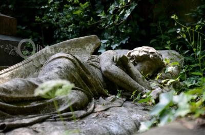 Sleeping Angel. Highgate Cemetery London.