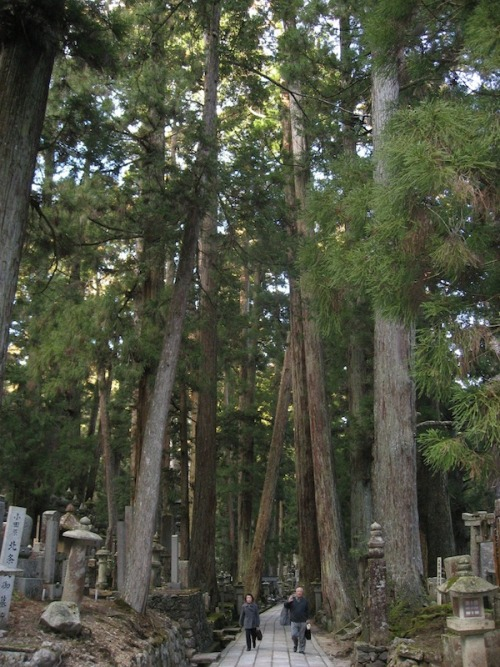 Okunoin Cemetery on Mount Koya (Koyasan), Japan.