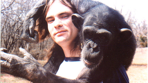 "nprfreshair:  Former researcher Bob Ingersoll on the chimp Nim Chimpsky: ""He actually signed 'stone smoke time now' to us first. We were shocked. Although we were familiar with chimpanzees that did  thing like drinking and smoke cigarettes and that sort of thing, I'd  never had a chimpanzee request weed from me. That was an eye-opener."" [complete interview with James Marsh, Ingersoll, and Jenny Lee here]"