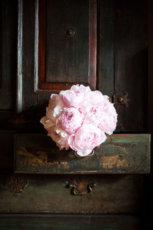 browneyedbellejulie:  Pink peonies do it every single time.