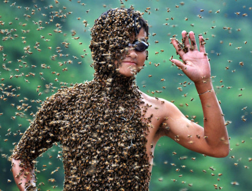 Bee-Wearing Competition in China