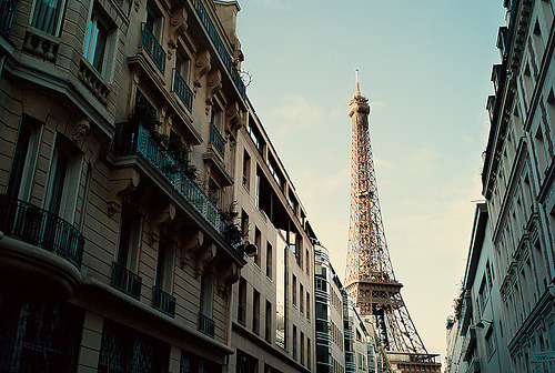 cattion:  Eiffel Tower (by rdowsley)