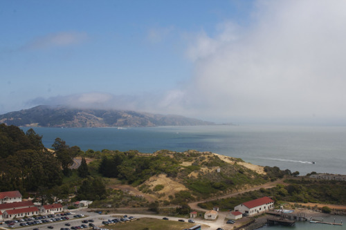 The lookout point at the Golden Gate Bridge. It was sadly mostly too foggy to photograph the bridge well. :( Canon Rebel XTi San Francisco, CA