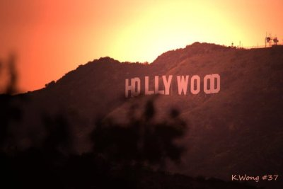 sunset @ hollywood yo…reblogg