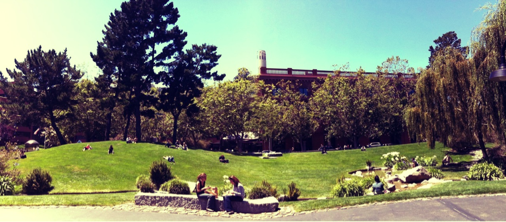 Beautiful day to find a good people watching spot in a San Francisco park. (sent via phone)