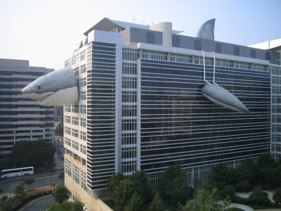 wolfenguy:  The Discovery Channel office building during Shark Week