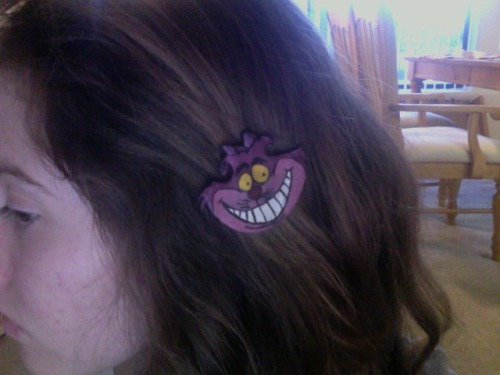 Cheshire Cat clip on etsy :)