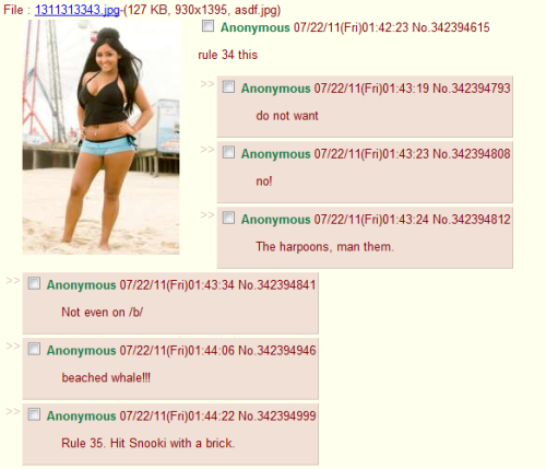 It's funny how even on 4chan, Snooki is disgusting. That's saying something.