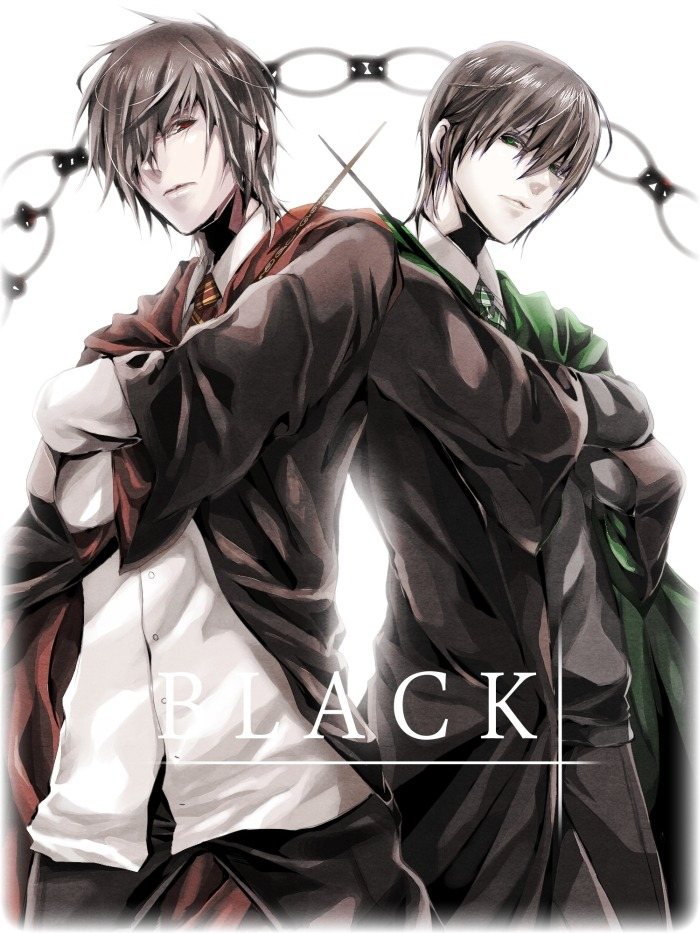 The Black Brothers… Sirius and Regulus… argh.. SO SEXY!