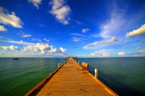 I'll wait until my throat gets dry (City Pier, Anna Maria Island, FL) by ohhector on Flickr.