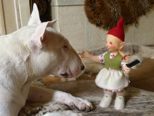 Every Bully should have a gnome ;-) by helenpriem on Flickr.