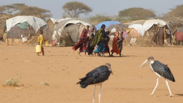 من لنساء الصومال من المجاعة؟ #Somali #refugees walk past storks July 21, 2011, on their way to collect water on the edge of the Dagahaley refugee camp, which makes up part of the giant Dadaab refugee settlement in Dadaab, Kenya. The United Nations has declared a famine in parts of Somalia as the worst drought in 60 years has crippled the Horn of Africa.  (Oli Scarff/Getty Images)