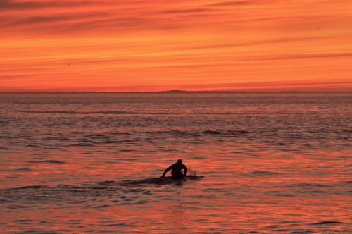 Surfer Tyler Warren paddling into the sunset.