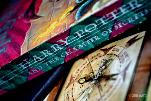 A Very Potter Photo (2/7) Chamber of Secrets + the Weasleys' clock + (mock) Riddle diary [ 1 | 2 | 3 | 4 | 5 | 6 | 7 ]