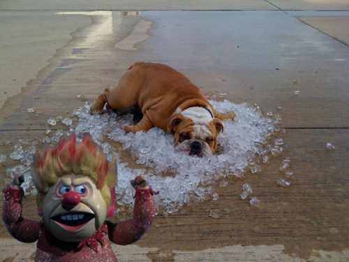 So, I decided Heat Miser needs to be a meme. Make is so, Internet!