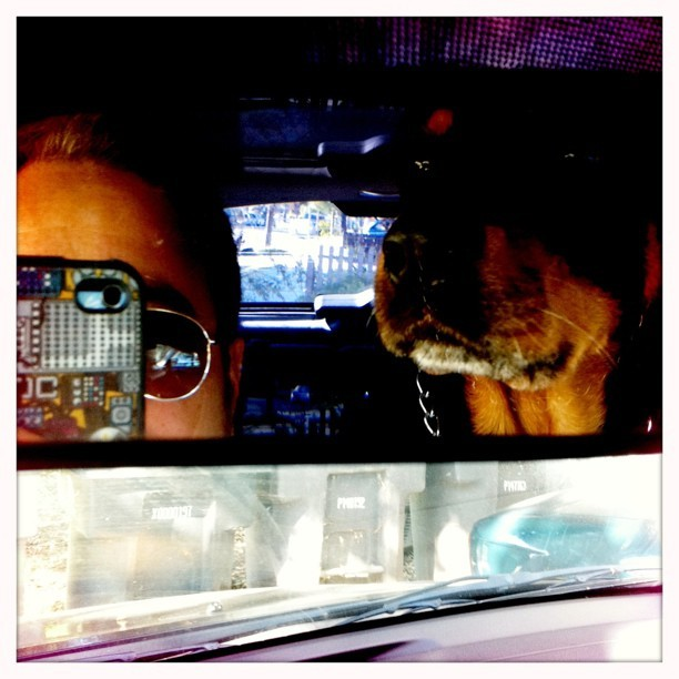 @j3concepts iPhone case and Snoop #artsprojekt #zazzle (Taken with instagram)