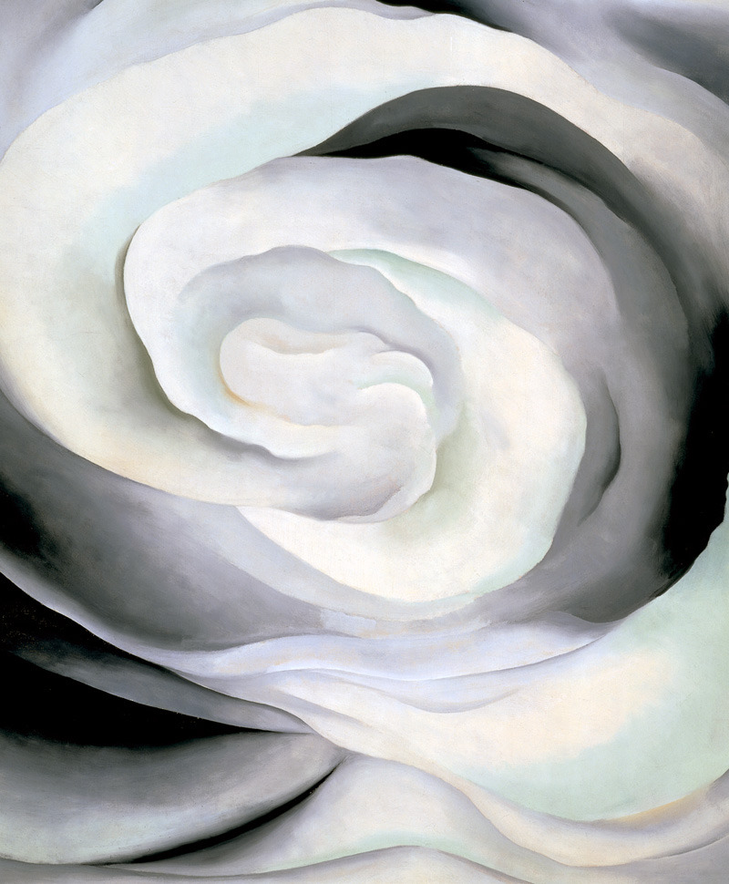 Abstraction White Rose (1927) by Georgia O'keeffe
