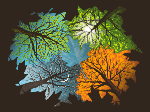 laughingsquid:  Four Seasons In One Day  Autumn Leaves