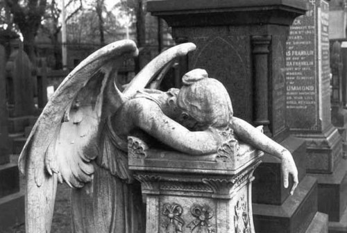 WEEPING ANGEL, YOU ARE DRUNK.