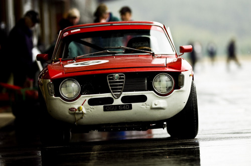 fonrenovatio:  Alfa Romeo Giulia Sprint GTA