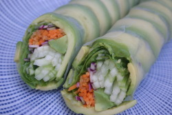 Lunch: avocado summer rolls from Market Street