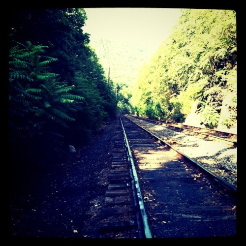 Pennsylvania RRD (Taken with instagram)