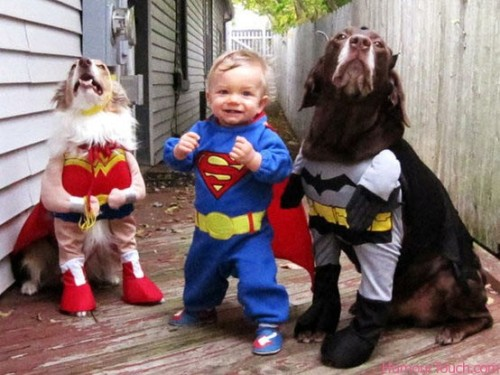 This is the cutest family photo I have ever seen. BATDOG'S FACE.