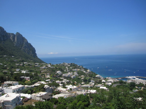 "Weekend trip to Sorrento, Capri, Pompeii Last weekend, we had a trip planned for the entire group. We woke up early to take a 4 hour bus ride to Sorrento to southern Italy in Naples right on the coast. The city sits on top of cliff overlooking the sea. When we arrived we checked into our 4 star hotel- Super nice!! And then we went to explore a little of the city and found some lunch. After eating we went shopping down on the main street where they have little shops that sell clothes, jewelry, souvenirs and lots of lemon products (shots of Lemonchello). Nellie and I bought hats :)For dinner Friday night, we were walking to find a place and as we were walking by a small street I said lets eat there. The place was called Buffalita and it turns out this place had amazing food! We ended up ordering a huge spread of appetizers with a plate of buffalo cheeses, bread and tomatoes and olives. For dinner I had Buffalo Ragu and shared a cheese fondue with Jeff. This was a delicious meal and I am pretty sure I was still full from it the next day. On Saturday, we took a ferry to Capri- a beautiful island only like 40 minutes away. When we first got there we went to the public beach (beach of rocks), we swam for a little and then took naps before lunch. After lunch we took a train to the top of the mountain which had an amazing view. The city at the top is super luxurious with many designer stores and fancy restaurants. We got gelato and walked around this area of the city for a while before running into some people from our group who wanted to take a boat ride. We went back to the bottom and went to the dock where we found a boat that took thirteen of us on a tour of the island. This boat ride was defiantly one of the best parts of my stay in Italy. We got to see natural made grotto where the was purple, green and red coral. The boat driver got us really close to the rocks inside each grotto, an amazing feat for the size of our boat. We also saw all the cliffs and houses sitting up top, apparently one is where the owner of Audio lives. We drove through the ""Tunnel of Love ""which is where two huge rocks come out of the water and one has a tunnel through the middle. We also got to stop multiple times and jump off the boat to go swimming in the beautiful water.Saturday night, some of the other people from our trip suggested a place by the port for dinner. We asked at the front desk and the guy set everything up for us, even transportation. We got some suv's, Real World status, that took us down to the port. Well the restaurant we had a reservation at was not exactly the same as the one that was suggested to us. We ended up at a very fancy restaurant over looking the water, it actually wasn't too expensive and very delicious. I had my favorite gnocchi and the experience was great!"