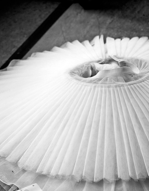 The Tutu by BenHellekson on Flickr.
