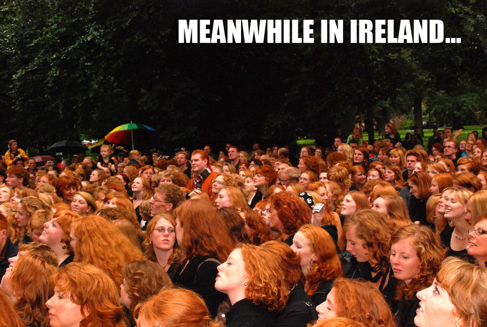ginger migration…